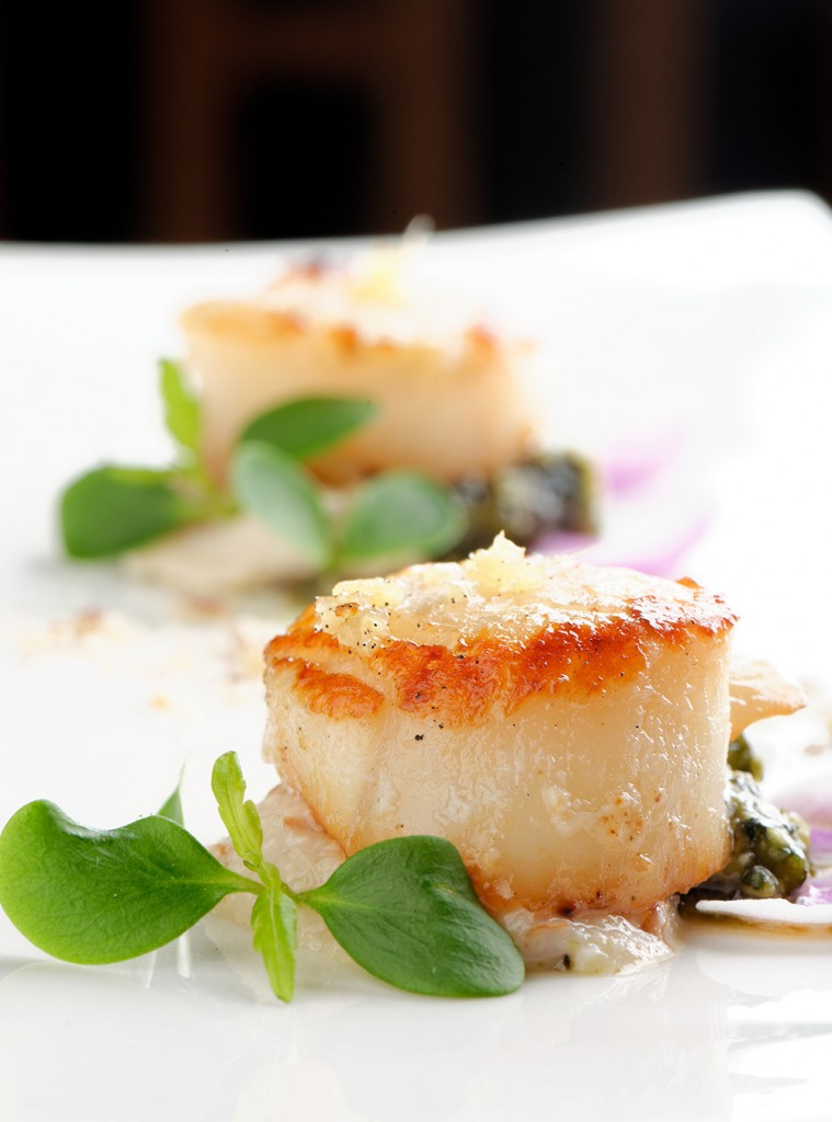 coquille sfeer productfoto