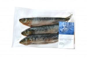 Sardines 827300